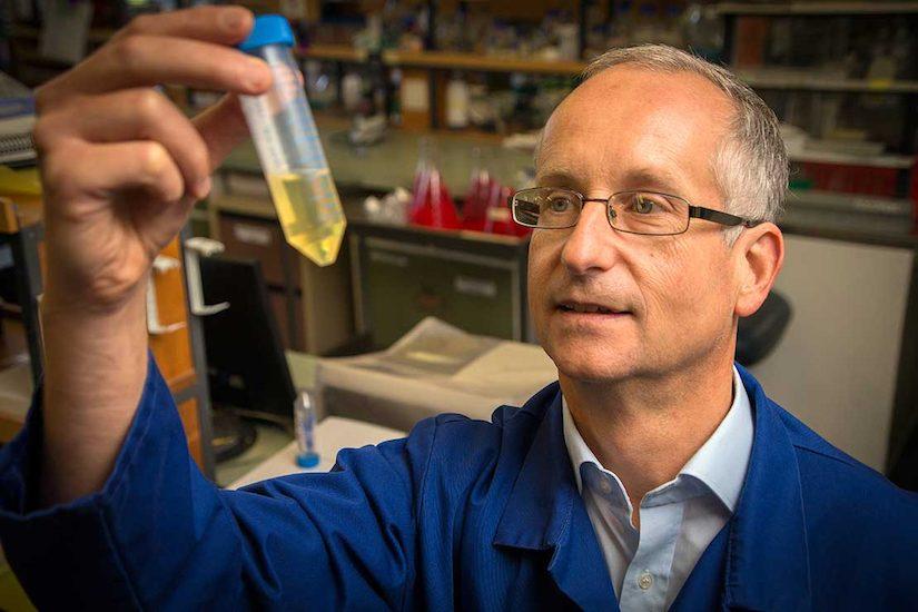 Professor Rehm in the laboratory
