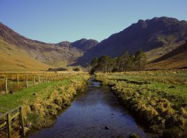 View of a stream between paddocks