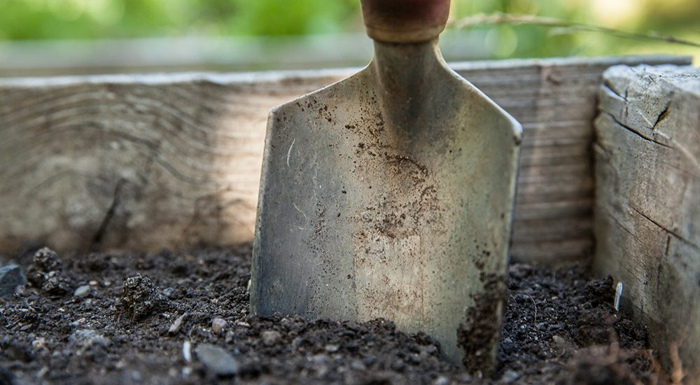 Garden trowel in soil